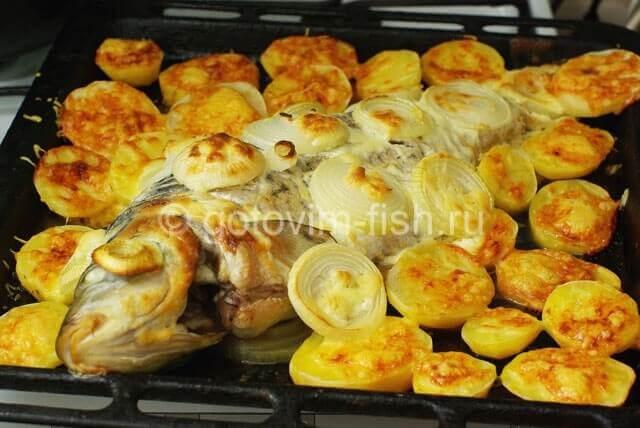 индюшатина с картошкой рецепты в духовке с