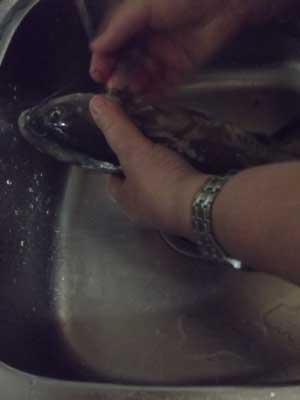 Мытье рыбы