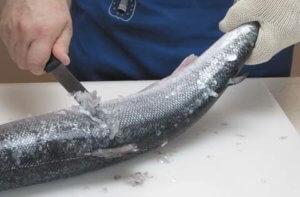 Чистка чешуи с рыбы